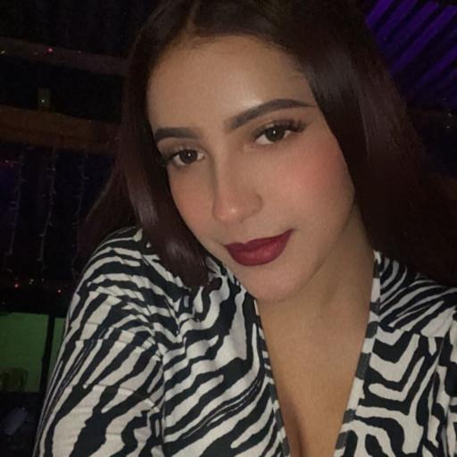 WILFREDO GIRON CASTILLO